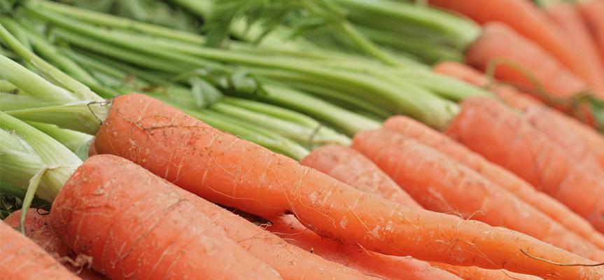 Alimenti che fanno bene alla vista ottica mori - Alimenti che fanno andare in bagno ...